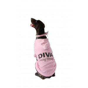 Diva Coming Through Baby Pink Hoody